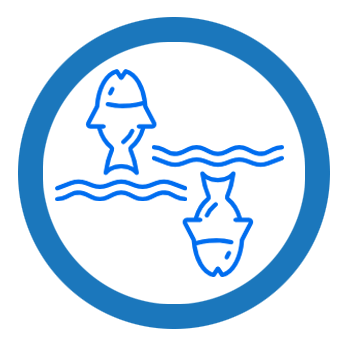 Logo of Marine Megafauna Foundation